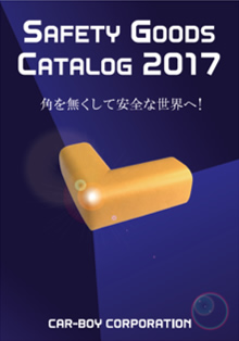 SAFETY GOODS CATALOG 2017